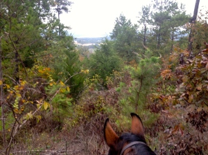 On the red trail with Wildflower, prior to the cold, rain and getting lost.