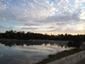 Jackson, FL overnight