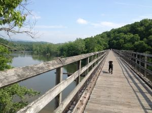 tressel crossing the new river