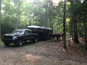 other camper's horses