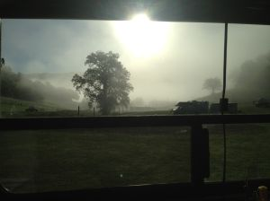 sunrise fog from my window