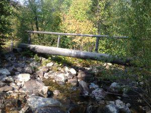 a log foot bridge